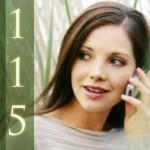 Einheitliche Behördenrufnummer 115
