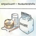 Kinder entdecken die Wissenschaft mit dem Entdeckercampus