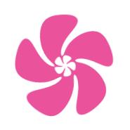 Pink Box Kosmetikprodukte