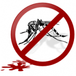 Natürlich gegen Stechmücken Stich