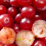 Superfood: Der Cranberry