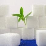 Natürlich Süß: Zucker und Alternativen