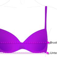 BH Brustumfang und Torso messen