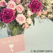 BLOOMY DAYS