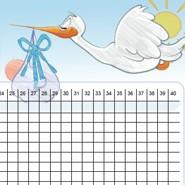 Baby-Plan Zykluskalender