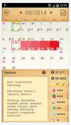 Der Menstruationskalender
