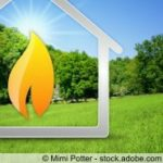 Brennstoff Alternativen für den Kamin