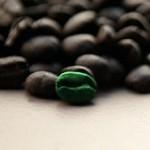Grüner Kaffee – nur Hype oder wirksam?