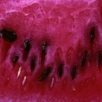 Sommer Smoothies Wassermelone – Rezepte