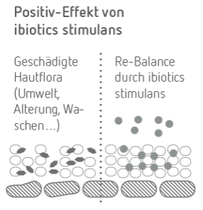 ibiotics stimulans Effekt