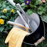 Empfehlenswerte Gartenbücher nicht nur für Einsteiger – Teil 1
