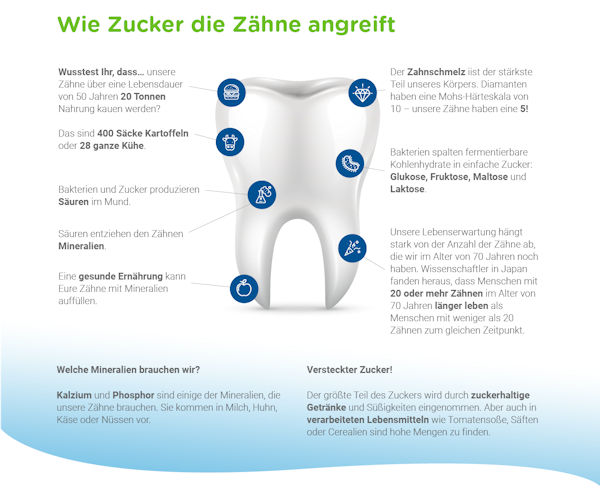Mundgesundheit - Wie-zucker die Zähne angreift