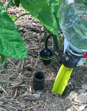 Gartenbewässerung mit Tröpfchensystem