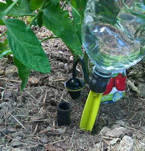 Garten: Tröpfchenbewässerung